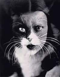 Kittymanray